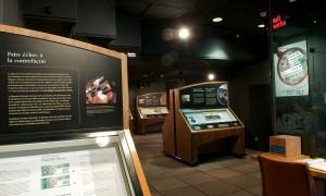 Présentoirs de musée
