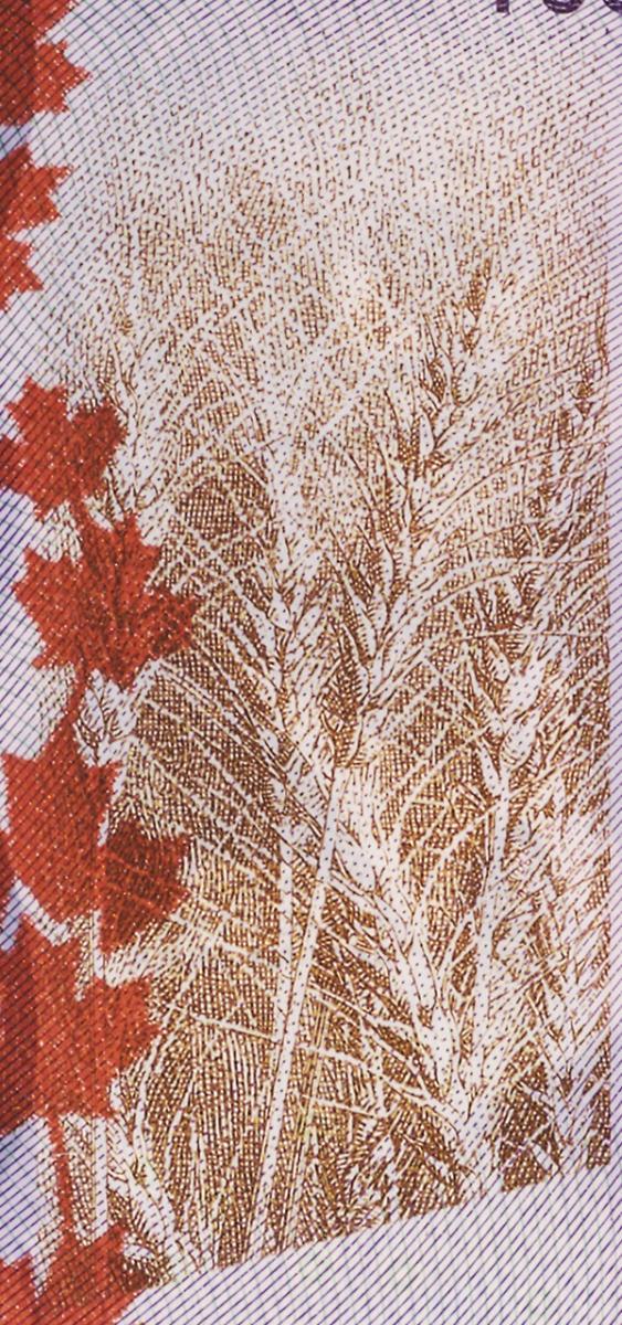 image d'un billet de banque : blé