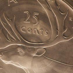 détail d'une pièce de 25 cents géante
