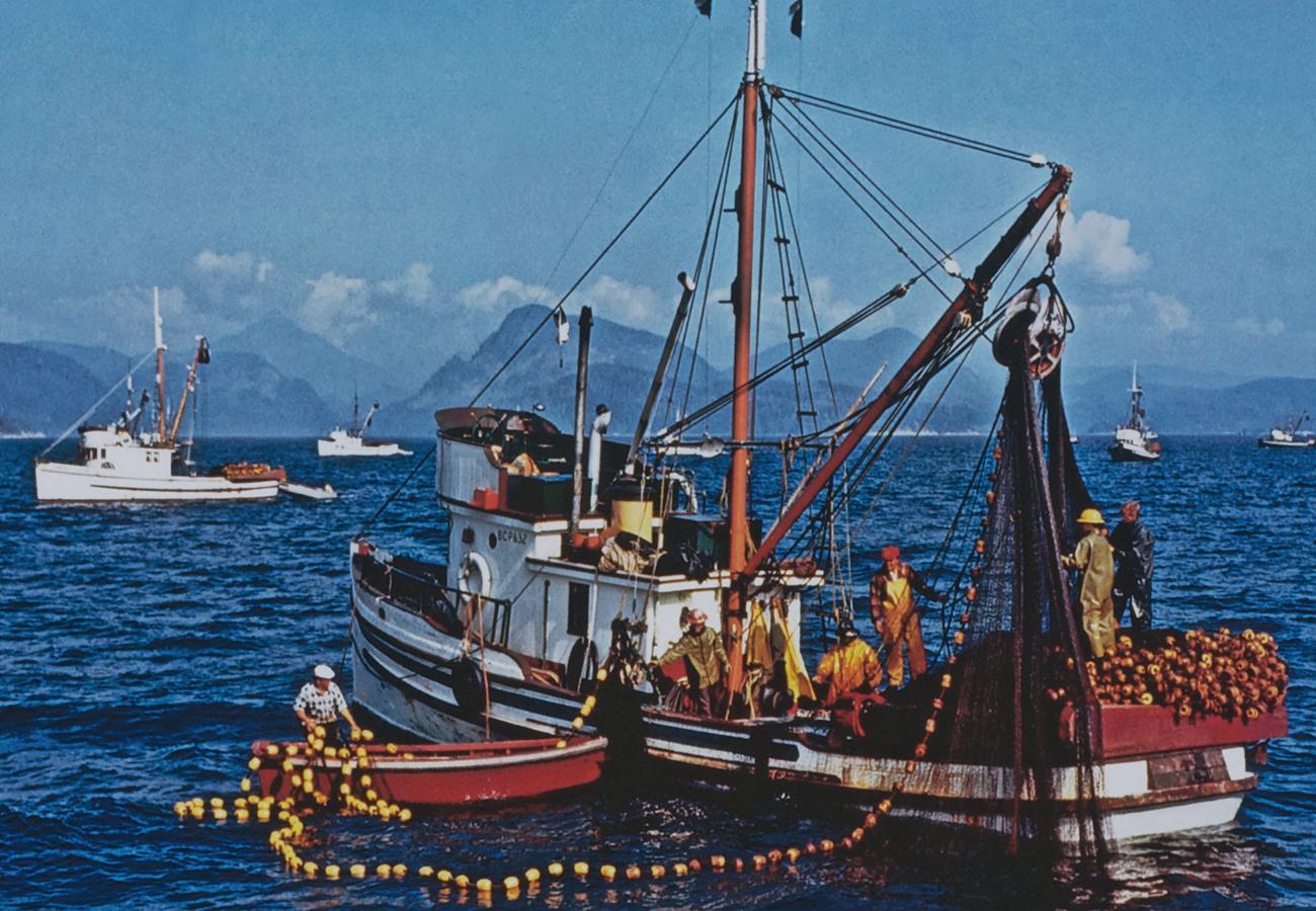 bateau de pêche et équipage hissant un filet