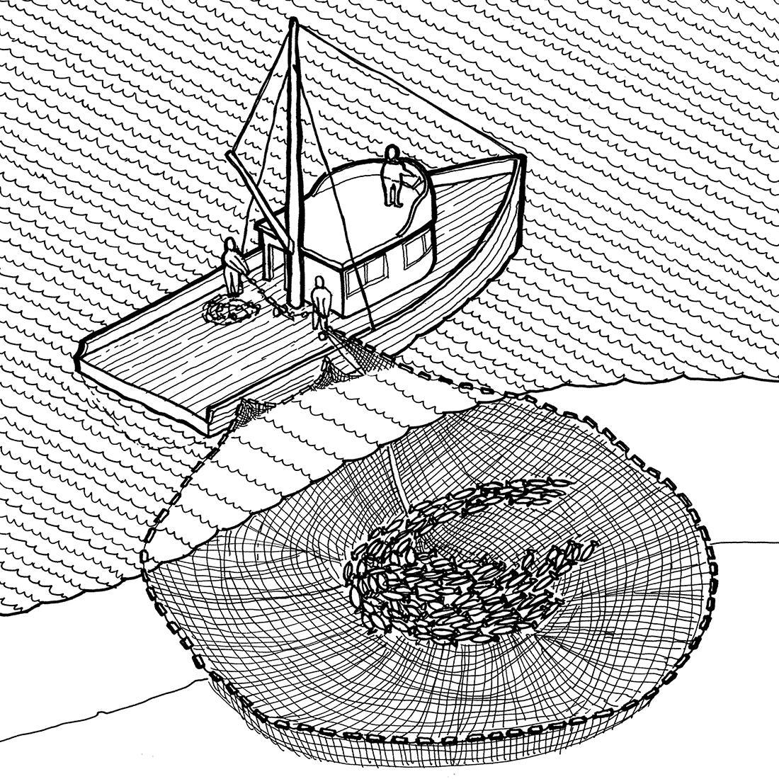 illustration d'un bateau de pêche hissant un filet