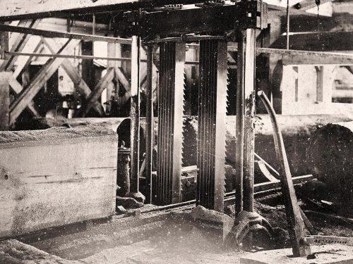 Photo en noir et blanc de deux groupes de sept scies verticales pouvant scier un billot d'un mètre de diamètre.