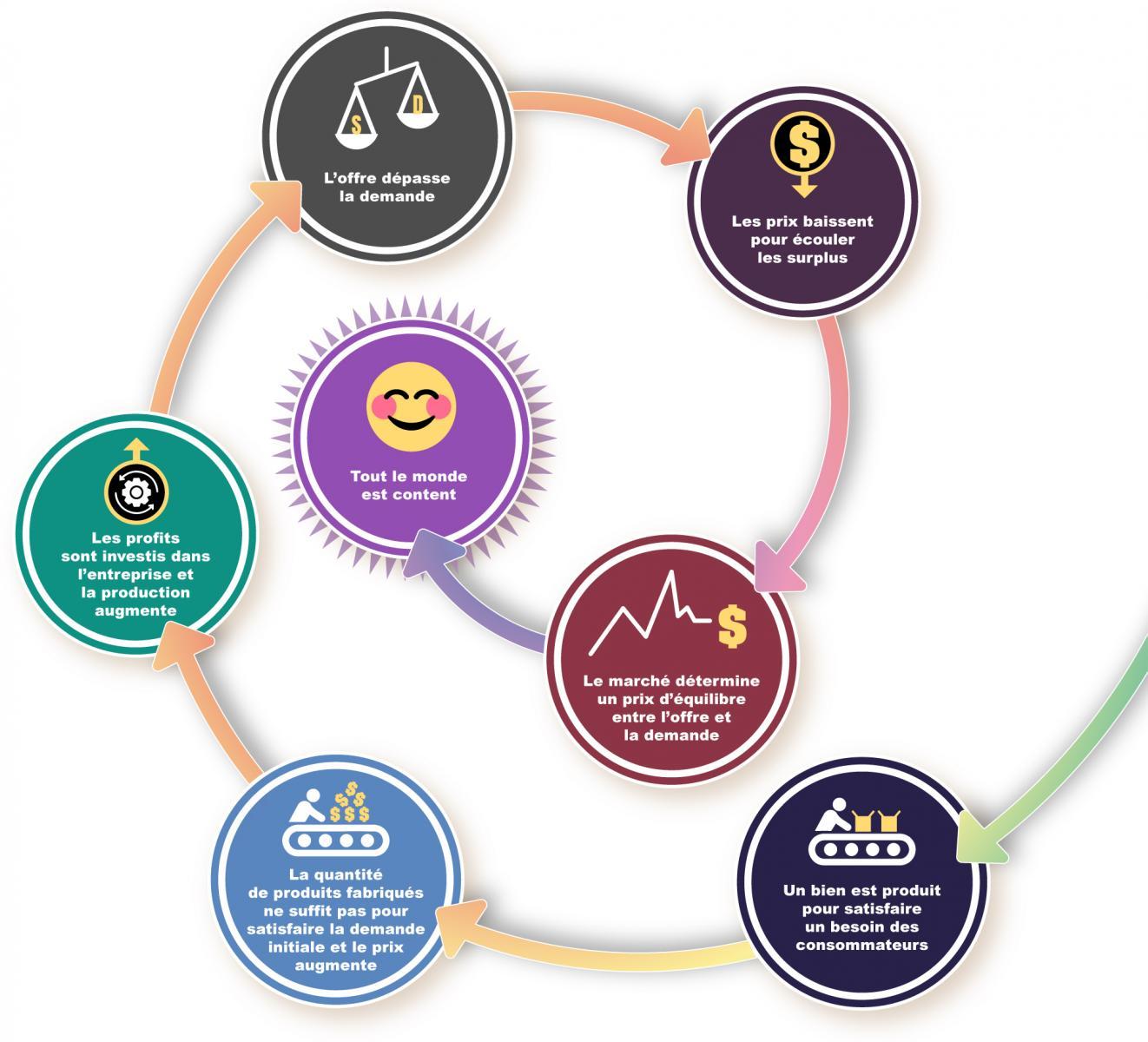 Diagramme composé d'ovales et de cercles colorés et reliés par des flèches où sont décrits les facteurs liés à l'offre et à la demande.